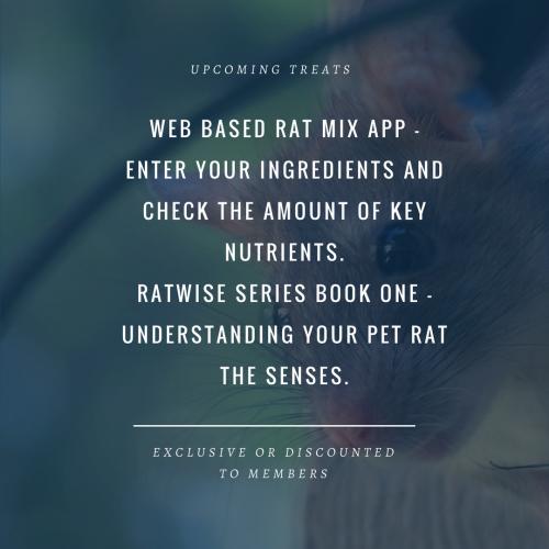 Ratwise